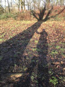 Blog Natuurlijke Reflecties